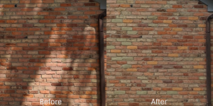Brick Repair Before and After